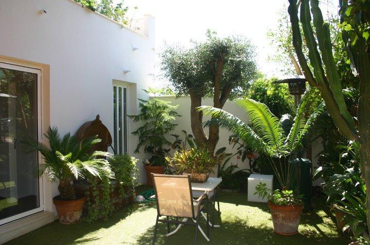 reforma-patio-murcia-plantas